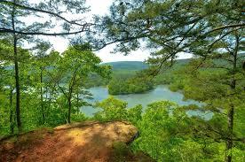 Arkansas forest images Arkansas united states sky mountain lake forest tree summer hd jpg