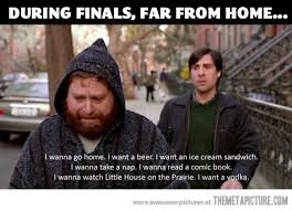 Zach Galifianakis Meme - how i feel during finals the meta picture