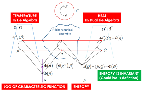 entropy special issue differential geometrical theory of