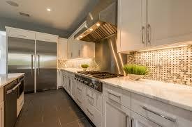 modern gourmet kitchen the kush group of austin texas barton creek specialist