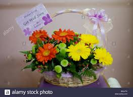 get well soon flowers get well soon flowers and fruits stock photo 60338906 alamy