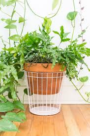 diy planters 50 easy to make diy planters ohoh blog