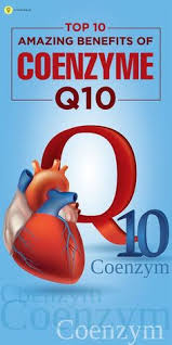 Obat Q10 Plus 5 benefits of coenzyme q10 promotes cardiovascular health