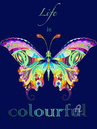 is colourful butterfly jpg seraphine