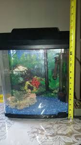 pictures of aquariums with ornaments including rocks and small