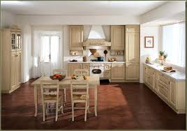 kitchen cabinets and doors interior home depot kitchen cabinets gammaphibetaocu com