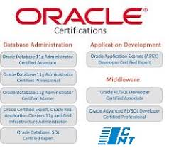 Oracle Dba Resume Sample by Dba Resume Bangalore