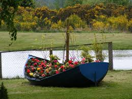 blue wooden canoe boat full of flowers free image peakpx