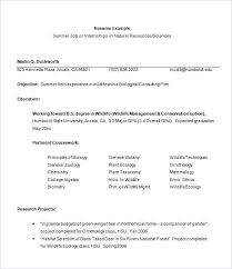 templates for resumes templates for resumes exle resume format for internship free
