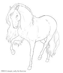 horse head front view drawing google search coloring pages of
