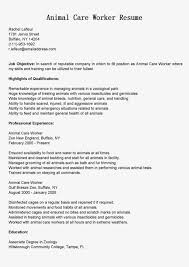 pet sitter resume sample child care worker resume samples