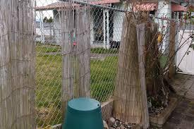 bamboo fencing florida backyard fence ideas