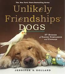 unlikely friendships dogs workman publishing