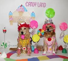 Candyland Halloween Costumes 158 Pet Halloween Costumes Images Homemade
