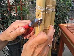 Build A Trellis by How To Make A Bamboo Trellis How Tos Diy