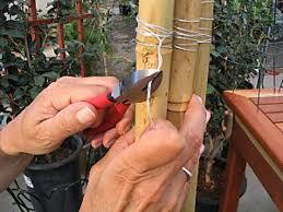 how to make a bamboo trellis how tos diy