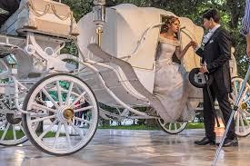 bianchi carrozze carrozza cavalli bianchi noleggio auto esclusive