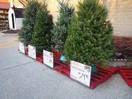 brown christmas tree large christmas home depot small christmas trees lights decoration