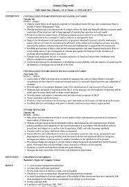 it manager resume exles intake manager resume sles velvet