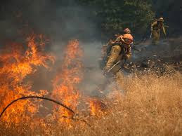 Wildfire Davis Ca by California Firefighters Burned Battling Wildfire In Mendocino