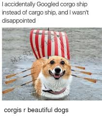 i accidentally googled corgo ship instead of cargo ship and l wasn t