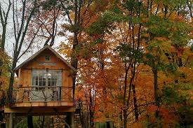 cool tree house 14 cool tree houses you can rent all america right now