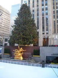 christmas tree lauren huyett interiors