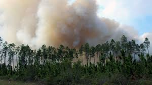 Wildfire Band Texas by Okefenokee Fire Continues To Grow