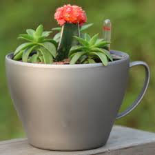gloss large teacup plastic flower pots with bright colors