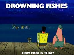 Funny Spongebob Memes - funny spongebob memes 07