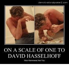 David Hasselhoff Meme - demotivationalposterz com on a scale of one to david hasselhoff how