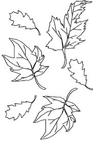best photos of fall leaves template coloring page free printable