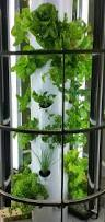vertical garden systems indoor home outdoor decoration