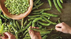 thanksgiving peas 15 fava bean recipes you need to try this spring martha stewart