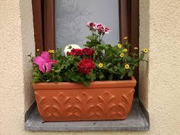 balkon bewã sserungssystem wohnzimmerz balkonpflanzen halbschatten with balkonoase alles