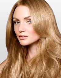 Hair Color Light Brown Light Golden Brown Hair Color Chart Hair Pinterest Light