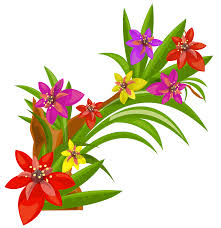exotic flowers decoration png image gallery yopriceville high