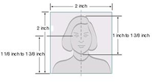 Passport Picture Template 2x2 passport photo template pertamini co