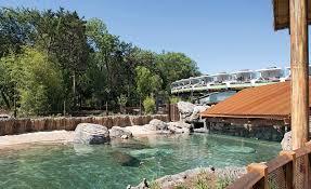 Backyard Monorail Landscape Hardscape Best Project Dallas Zoo Simmons Hippo Outpost