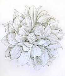 tattoo flower drawings dahlia flower drawings pinterest dahlia flower dahlia and flower