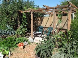 favourite gardens sustainable edible garden design consultancy