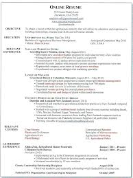 free online resume template word resumes on line phenomenal online resume template word with resume