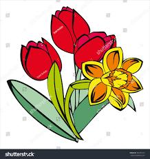 tulip daffodil spring flowers cartoon vector stock vector