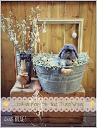 Easter Decorations For Front Porch by Little Brags Easter Decor Around The House Our Bunny On Front