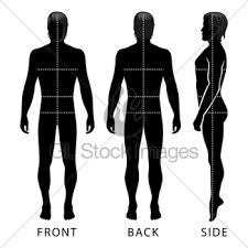 fashion man full length outlined template figure gl stock images