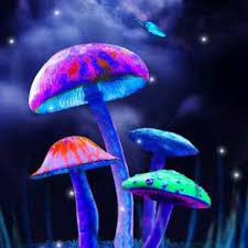 wallpaper 3d mushroom 3d mushroom magic wallpaper 1mobile com