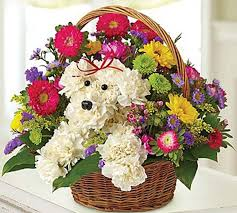 types of flower arrangements 7 delightful flower arrangements for the 7 types of dog moms barkpost