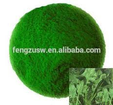 natural food coloring spinach powder u0026 superfood powder spinach