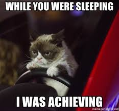 Grumpy Cat Sleep Meme - while you were sleeping i was achieving grumpy cat driving 2