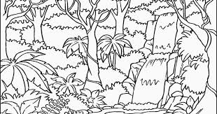 Tropical Rainforest Coloring Pages tropical rainforest coloring pages murderthestout coloring pages for